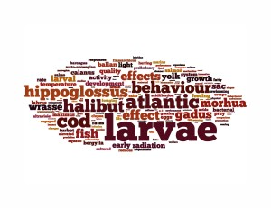 Wordle_Anne Berit