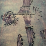 ocean-sun-fish